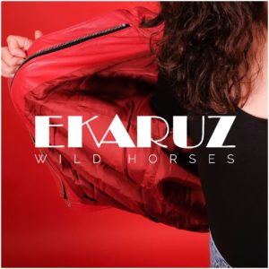 SingleCover_WildHorses_1261x1261_Web_preview